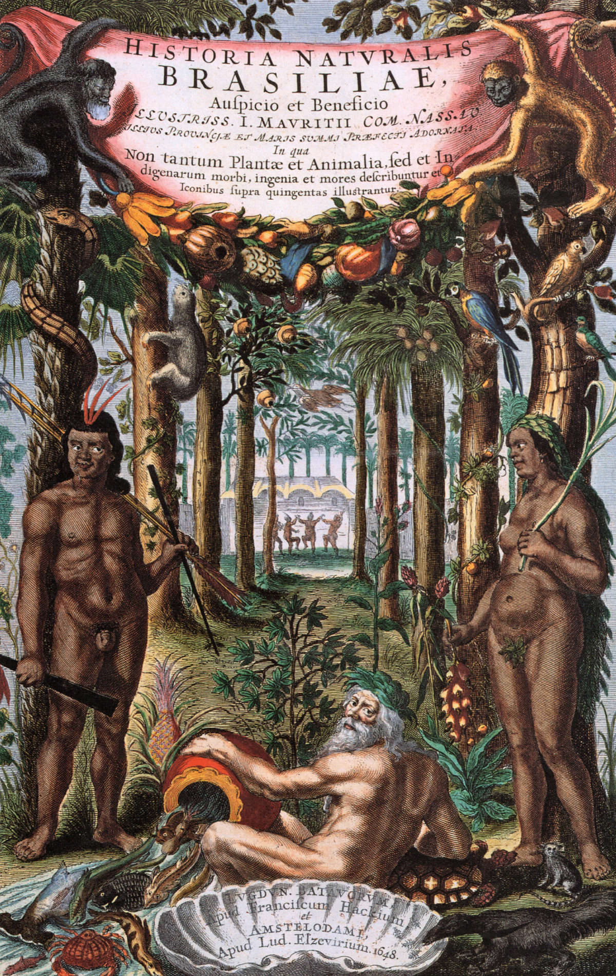 On the Quest again: Historia Naturalis Brasiliae